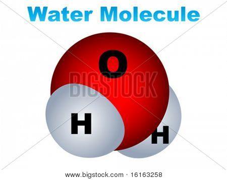 Water molecule vector illustration