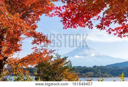 Mt. Fuji and autumn foliage at Lake Kawaguchi