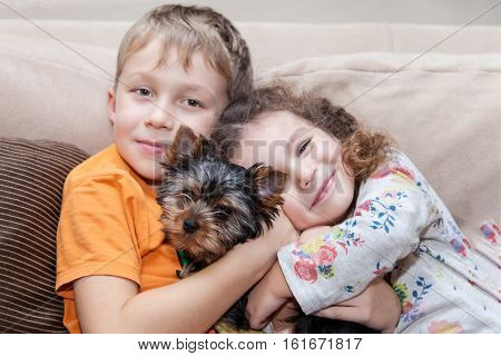 Happy boy and girl hugging with a puppy of Yorkshire terrier. Focus on puppy children are in the blurring zone