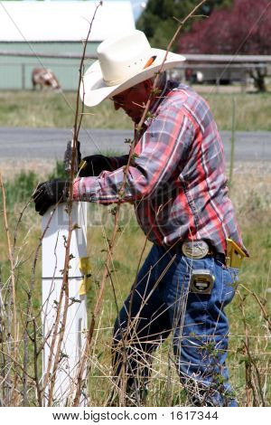Cowboy Fixing Fence