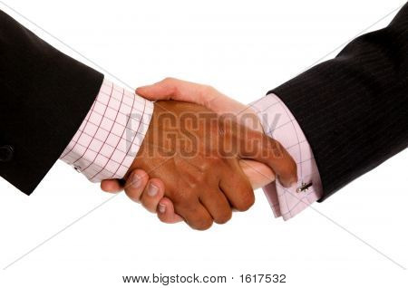 Business Handshake Deal - Diversity