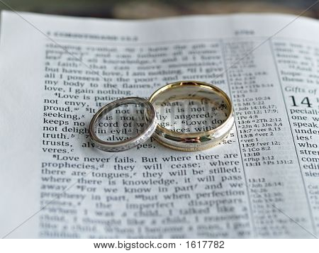 Selissas blog Wedding Rings and Bible The first wedding vow in the