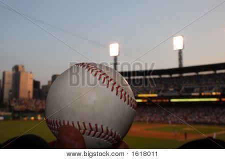 Baseball Fan