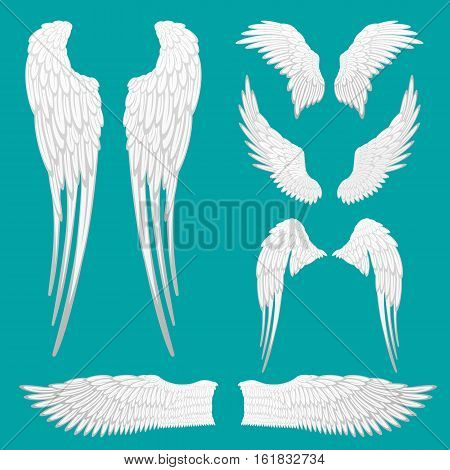 Angel white wings set isolated. Heraldic wings set for tattoo or mascot design. Bird feather of different shapes. Abstract angel wings sketches collection. Wing label icon sign. Vector illustration