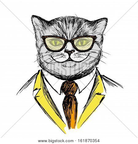 cat dressed up in hipster stylefashion vector illustration on white background