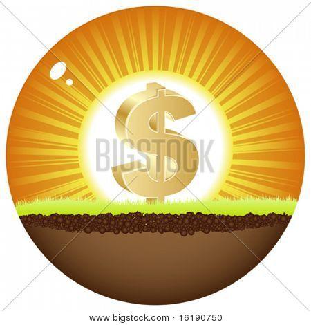 dollar view in sunshine