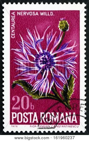 ROMANIA - CIRCA 1974: a stamp printed in Romania shows Thistle Centaurea Nervosa Flowering Plant circa 1974