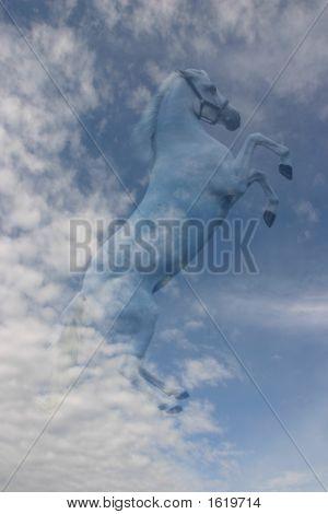 Horse In The Sky: Pegasus