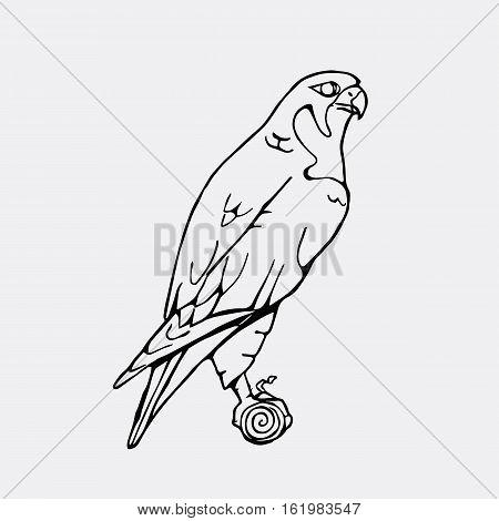 Hand-drawn pencil graphics, vulture, eagle, osprey, falcon, hawk, scavenger, condor, karkar, kite. Engraving, stencil style. Bird predator. Black and white logo, sign, emblem, symbol. Stamp, seal. Simple illustration. Sketch.