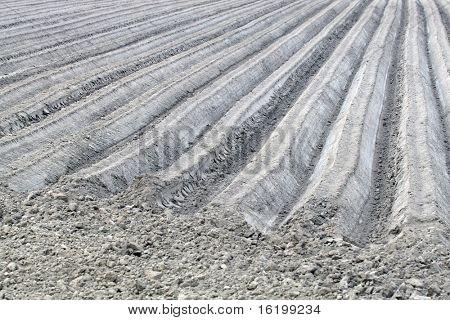 workable land in spiring