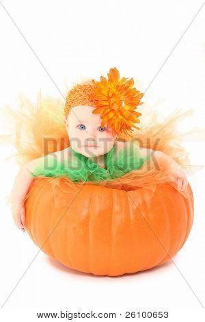 Adorable niña en naranja y verde tutu emplazamiento en calabaza sobre fondo blanco.
