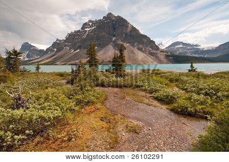 Bow Lake And Greenery