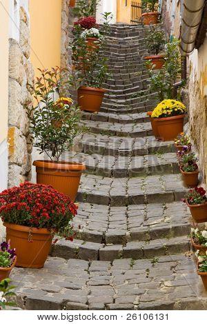 Beautiful stairs, Szentendre, Hungary