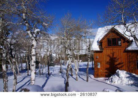 Winter Snow: Rolling Hills