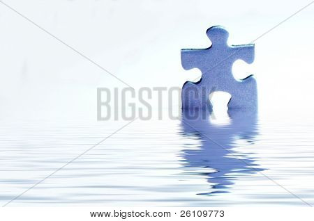 puzzle in water on white