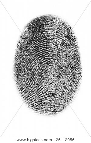dactyloscopy personal fingerprint isolated on white background