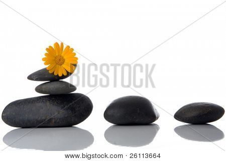 spa stones with yellow flower over white