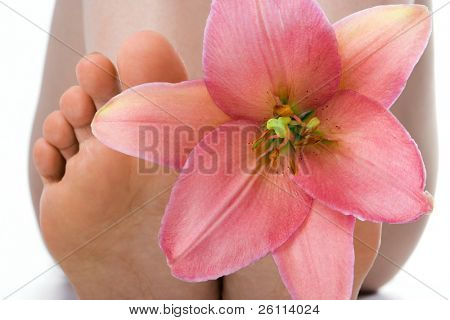 beauty woman legs with pink lily
