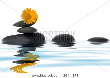spa stones with yellow flower in water over white