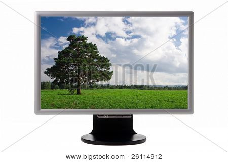 nature landscape in plasma monitor isolated over white