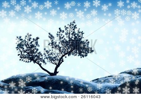 alone tree stand over blue sky on stone with snowflake