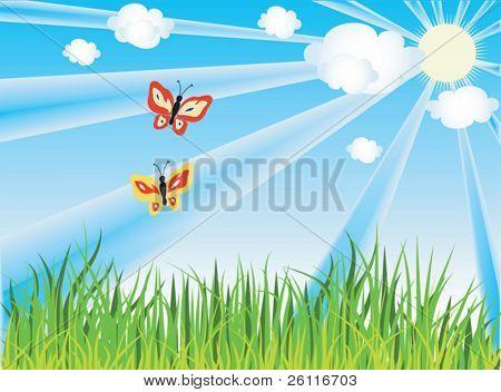 Schmetterling über Gras unter blauen Himmel, Wolken und Sonne