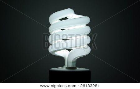 Florescent Bulb
