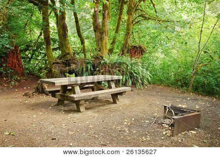 Picnic table and BBQ pit at a forest campsite in Oregon