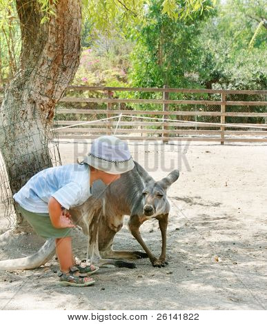 young boy and kangaroo in zoo