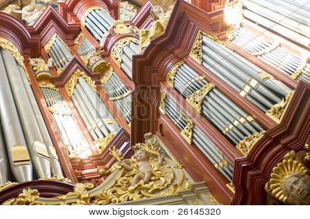 The pipes for the various tones of a huge church organ
