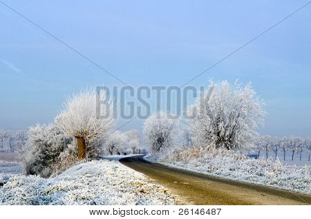 A rural road on a dutch dike, just before the break of dawn on a winter morning