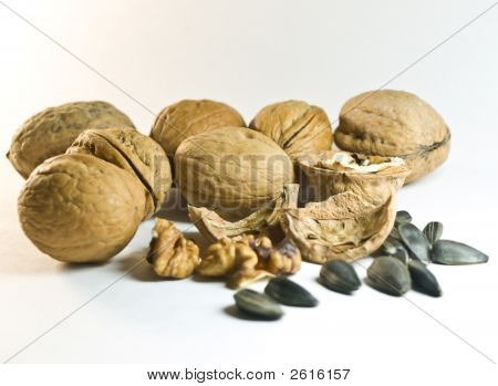 Nuts On A White Background
