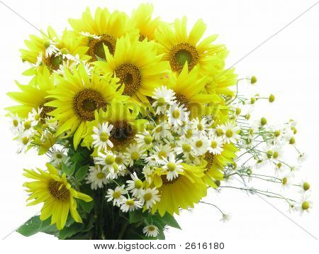 Bouquet On A White Background