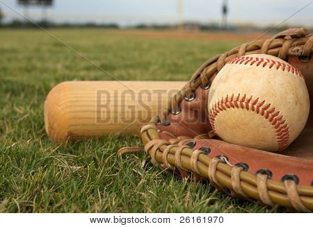 Baseball in a Glove with Bat