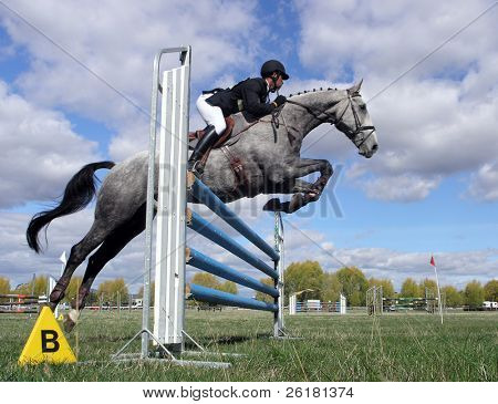 Grey show jumper going over a jump