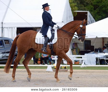 HASTINGS, NEW ZEALAND - MARCH 21: An unidentified advanced dressage rider competing at the Kelt Capital Horse of the Year Event held in Hastings, New Zealand on March 21, 2009