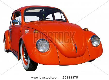 Orange Beetle isolated with clipping path