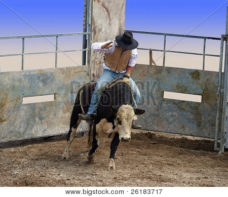 A Bull with Rider Coming out of the Gates partial isolation with clipping path