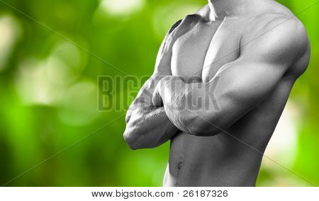 strong torso of young man on a green plants background