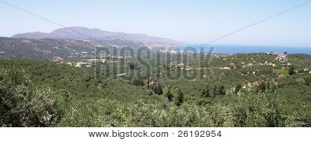 A Cretan panorama, looking north across the olive groves to the Rodopou Peninsula in the distance.