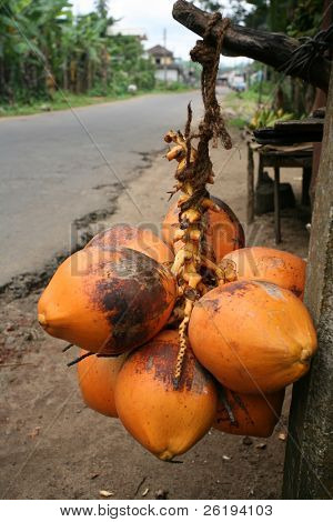 A roadside king coconut stall next to a typical, fairly major  rural Sri Lankan road, the tarmac crumbling at the edges.