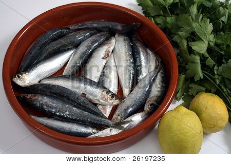 Sardines (pilchards) in a rustic bowl with their heads and innards removed and lemon and parsley beside them. Sardines, are high in Omega-3 oils and Vitamin D