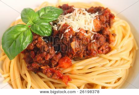close-up view of a nest of spaghetti with bolognese sauce garnished with a sprig of Italian large-leafed basil
