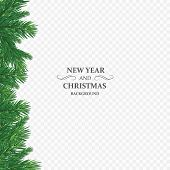 Background With Vector Christmas Tree Branches And Space For Text. Realistic Fir-tree Border, Frame  poster
