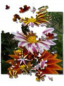Flower Jigsaw Illustration