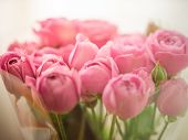 Bouquet Of Pale Delicate Peony, Roses Wrapped In Cellophane poster