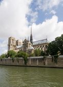 A classic, almost archetypal view of the Notre Dame and Ile de la CitŽ, seen from across the river Seine in Paris. The cathedral is basking in the sunlight poster