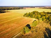 Big Field After Harvest Aerial View. Autumn Woods poster
