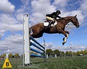 picture of dapple-grey  - Show jumper against a cloudy sky - JPG