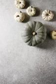 Grey Confection And White Whole Uncooked Defected Decorative Pumpkins Over Grey Texture Surface. Fla poster